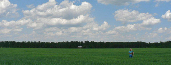 An image of Ivanhoe, North Carolina